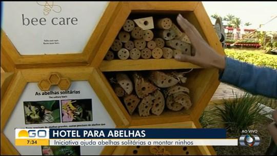 Conheça o 'hotel de abelhas' exposto na Tecnoshow, em Rio Verde
