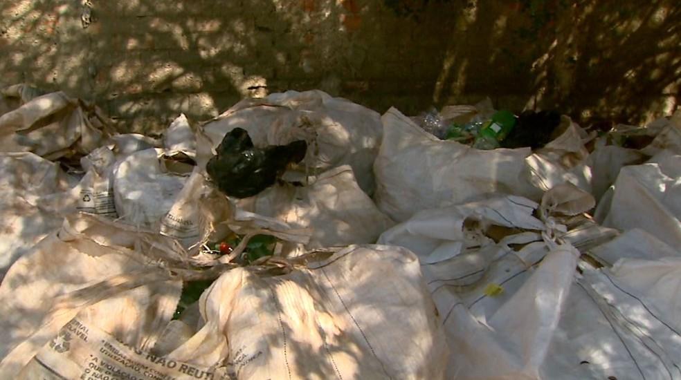 Projeto recolhe mais de uma tonelada de material reciclável por mês em Santa Cruz da Esperança (SP) (Foto: Maurício Glauco/EPTV)