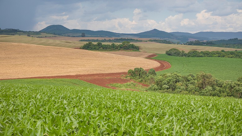fazenda-rio-do-pedro (Foto: Marcos Camargo/Ed. Globo)