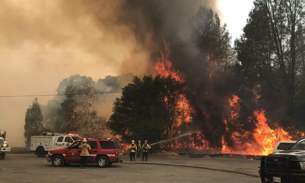 Bombeiros tentam controlar incêndio no norte da Califórnia (Foto: Jonathan Cox/Cal Fire Communications via AP)