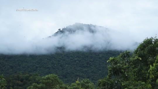 Foto: (Reprodução/Partiu Amazônia)