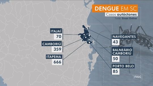 Litoral Norte concentra mais de 85% dos casos de dengue contraídos dentro de SC em 2019