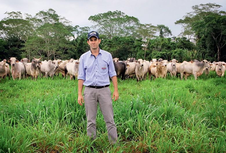 Amazônia - Vando Telles, sócio e diretor executivo da empresa Pecsa (Foto: Fernando Martinho)