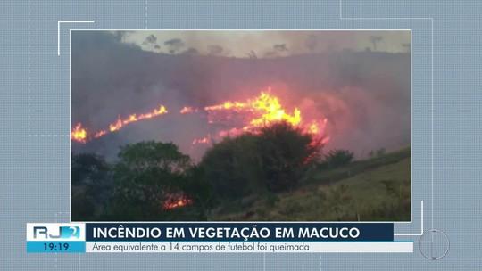Área equivalente a 14 campos de futebol é queimada em Macuco