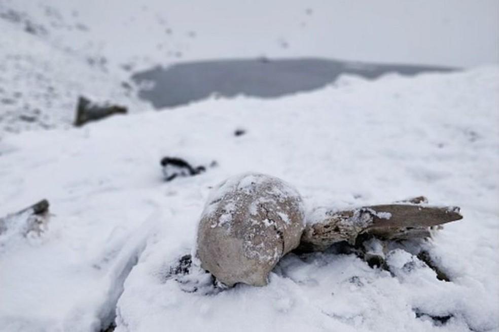 Esqueletos ficam boa parte do ano encobertos por neve e gelo — Foto: GETTY IMAGES/BBC