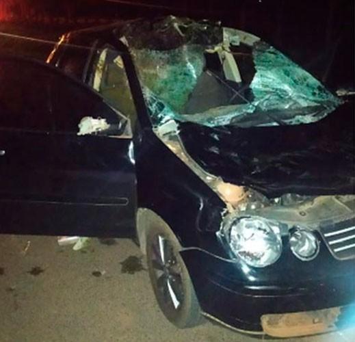 Motorista fica ferido após atropelar cavalo em Paraguaçu Paulista