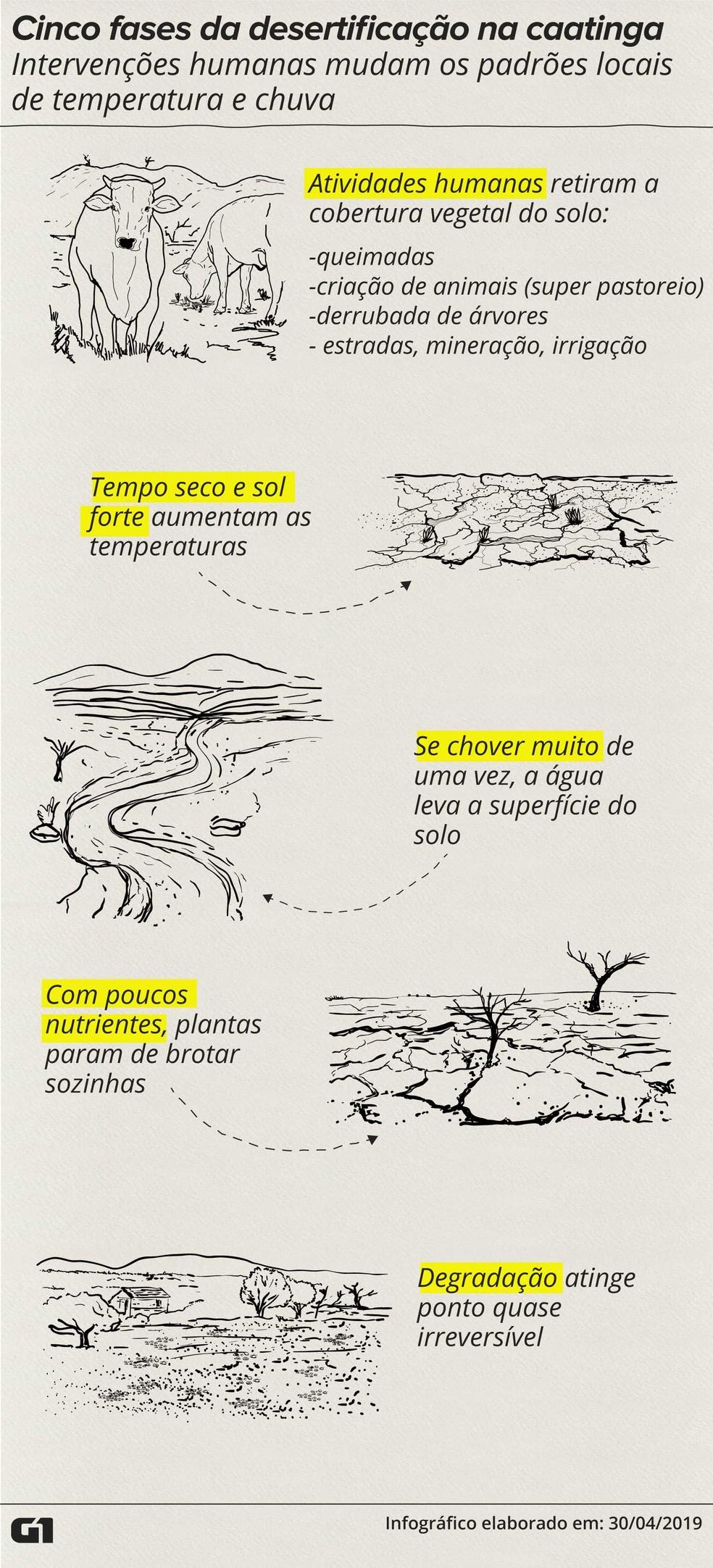 Ciclo da desertificação no semiárido brasileiro — Foto: Wagner Magalhães/G1