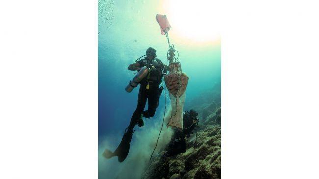 Foram necessárias 92 horas de trabalho no fundo do mar para analisar os artefatos (Foto: Divulgação/Anastasis Agathos/Ephorate of Underwater Antiquities)
