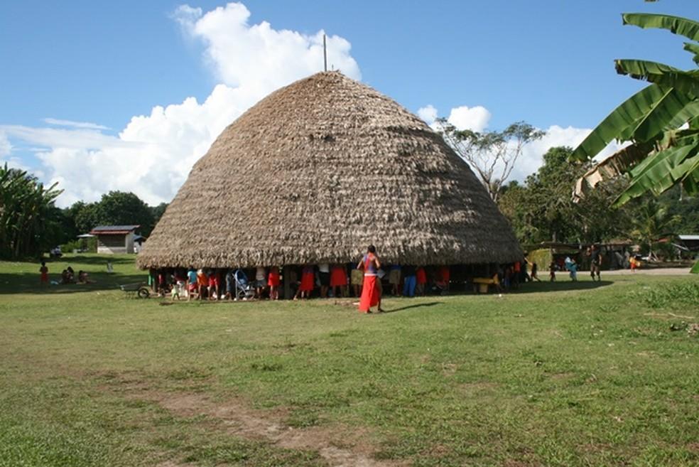 Construção tradicional de uma das populações autóctones que vivem dentro do Parque Amazônico da Guiana, na Guiana Francesa — Foto: Guillaume Feuillet/Parc amazonien de Guyane