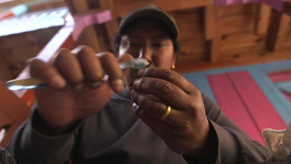 Um quilo do fungo pode custar US$ 100 mil (R$ 386,3 mil) (Foto: Reproduçao BBC)