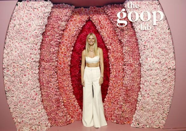 Resultado de imagem para Gwyneth Paltrow vagina