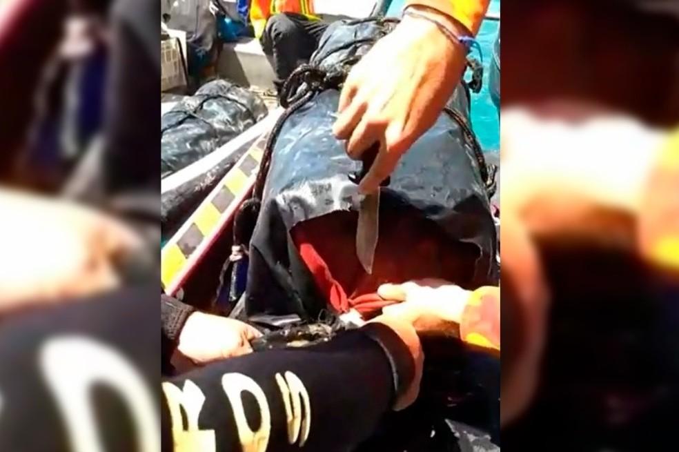 300 quilos de cocaína estavam escondidos em embarcação em porto no Ceará — Foto: PF/Divulgação