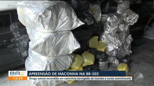 Três pessoas são presas com quase uma tonelada de maconha em veículos que transportavam mamão na Bahia
