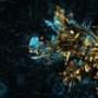 Papel de Parede: Cosmos Set