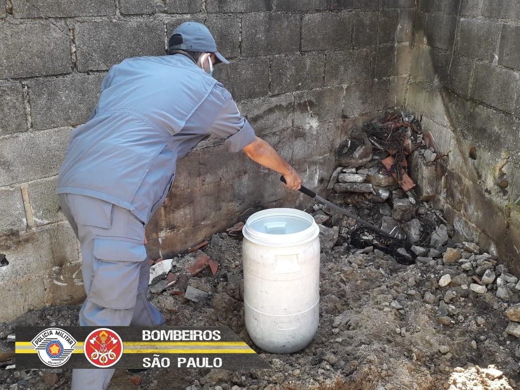 Morador encontra cobra venenosa no quintal de casa em São de Sebastião