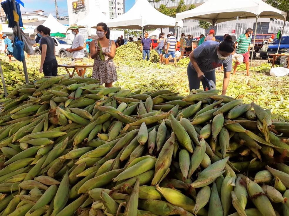 Feira do Milho registra queda de vendas em 2020 em Natal — Foto: Lucas Cortez/InterTV Cabugi