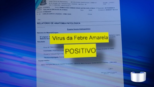Atibaia faz mutirão de vacinação contra febre amarela após morte de macaco