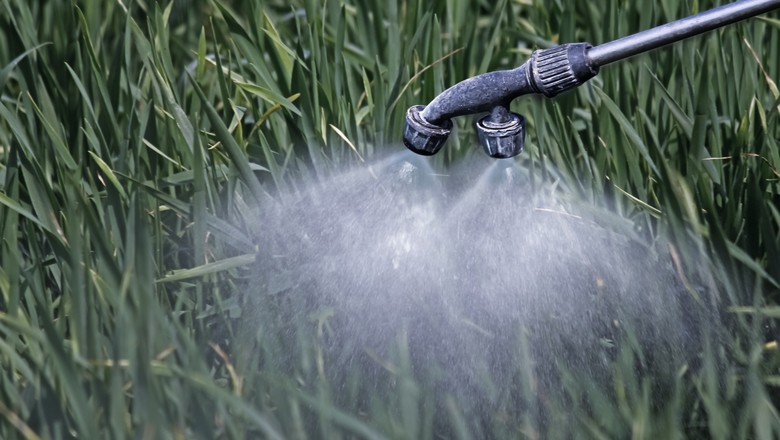herbicida-agrotoxico-agricultura-plantação-aplicacao (Foto: Thinkstock)
