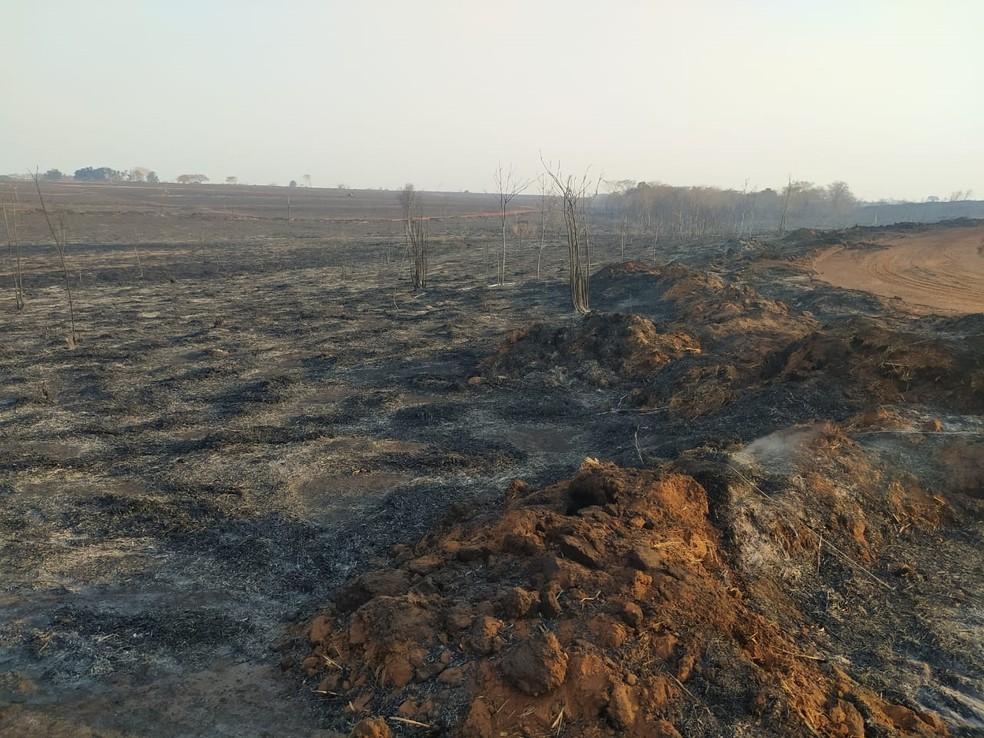 Área que pegou fogo na região de Itapura e funcionário de usina morreu — Foto: Rafael Honorato/TV TEM