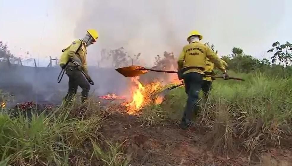 Bombeiros registram 877 ocorrências de queimadas em Rio Branco — Foto: Reprodução Rede Amazônica