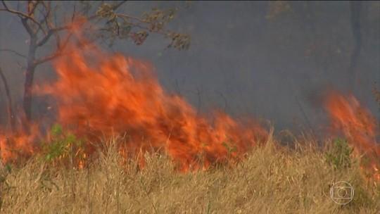 Fogo na Chapada dos Veadeiros já consumiu quase 15% do parque