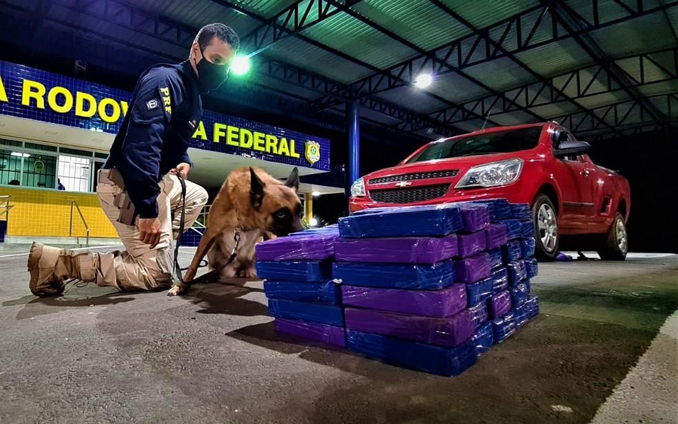 Droga estava escondida em fundo falso de caminhonete — Foto: Divulgação/PRF