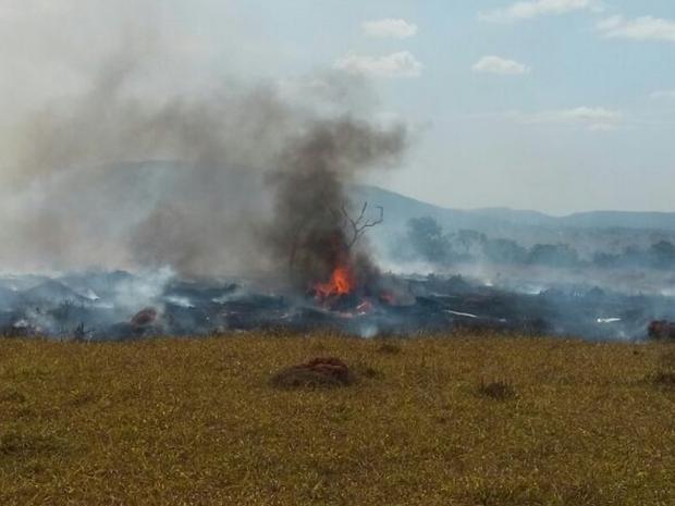 Avião caiu durante voo panorâmico em Corumbaíba, em Goiás (Foto: Reprodução/TV Anhanguera)