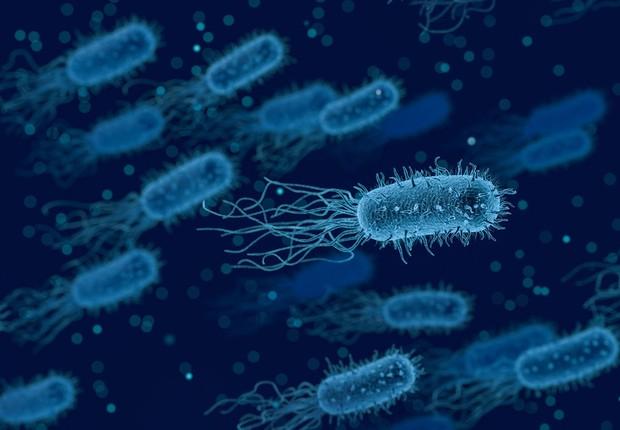 Super-bactérias são alvo de novos desenvolvimentos na área médica (Foto: Pixabay)