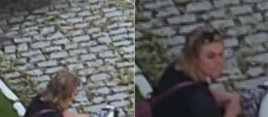 Vídeo: ex-paquita se feriu antes de acusar ex; advogado renuncia (Reprodução/Fofocalizando)