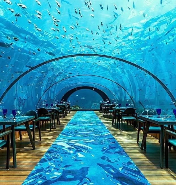 5.8 Undersea Restaurante (Foto: Reprodução/Instagram)