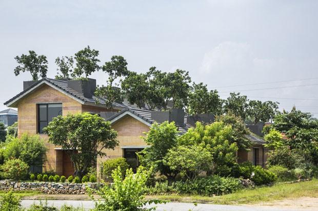 Árvores frutíferas crescem no telhado desta casa  (Foto: Hiroyuki Oki / divulgação)