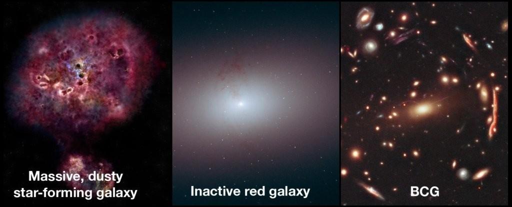 Galáxia monstruosa de 12 bilhões de anos é encontrada por astrônomos. Da esquerda para a direita: galáxia massiva formando estrelas; galáxia inativa; e região onde está inserida (Foto: NASA/ESA)