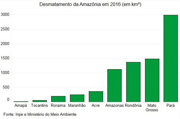 desmatamento amazonia