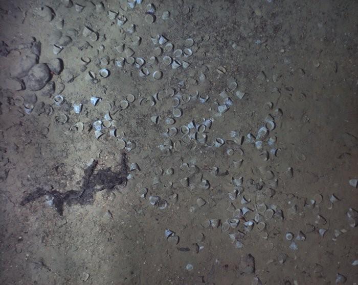 Restos dos tesouros do navio (Foto: WHOI)