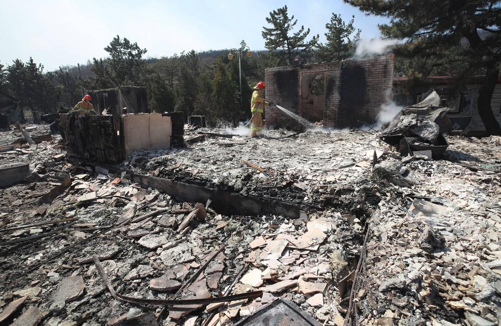 Bombeiros apagam resquícios de fogo em Donghae, área da Coreia do Sul atingida por incêndio florestal nesta quinta-feira (4) — Foto: Yonhap/AFP