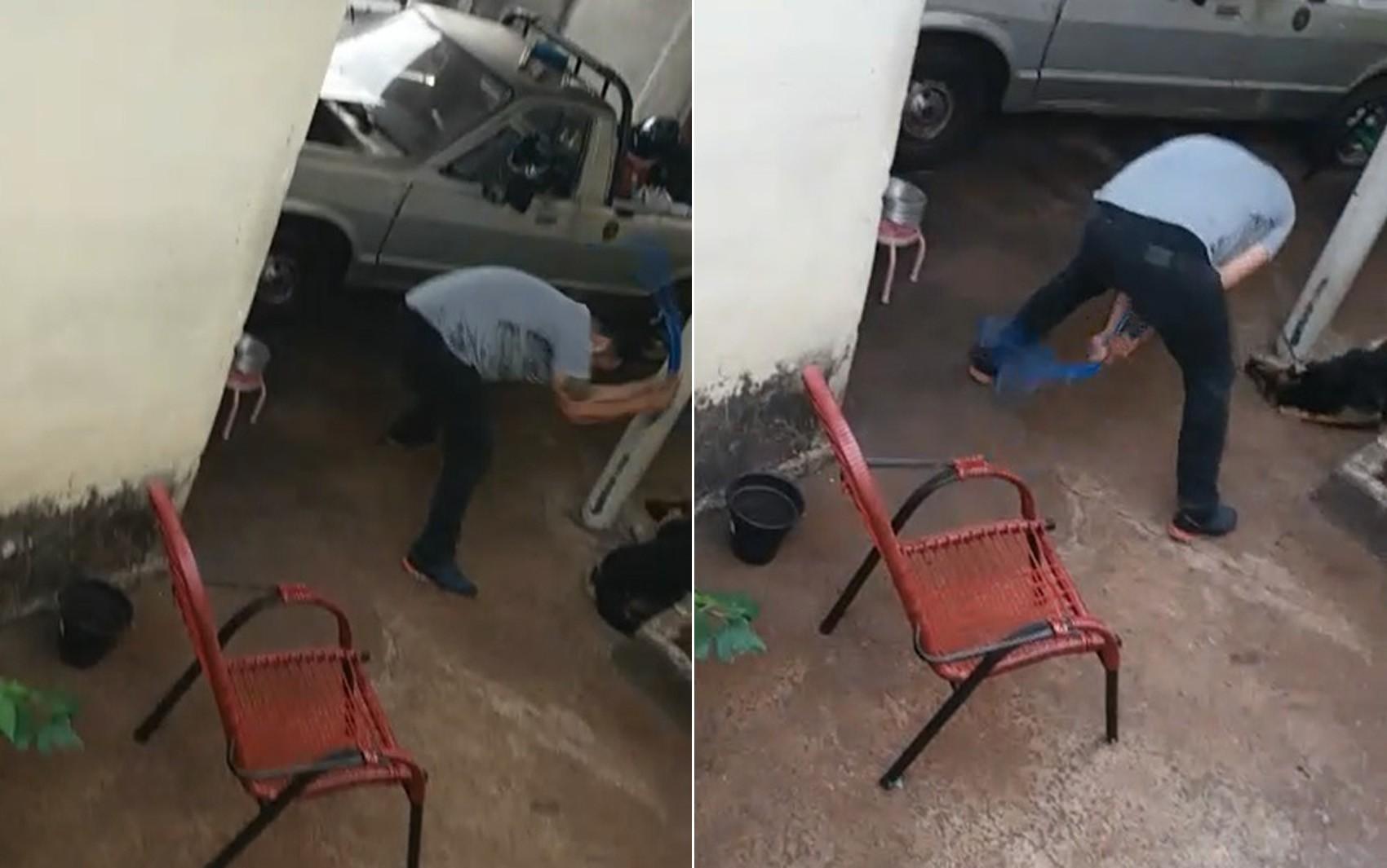 Justiça concede liberdade provisória a pastor suspeito de agredir cadela com mangueira em Ribeirão Preto, SP