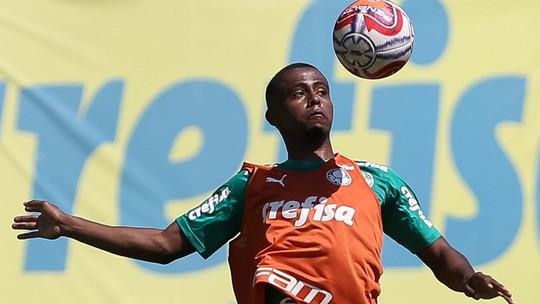 Foto: (César Greco / Ag. Palmeiras / divulgação)