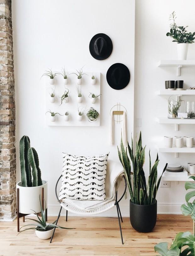 Décor do dia: hall de entrada branco decorado com plantas (Foto: Divulgação)