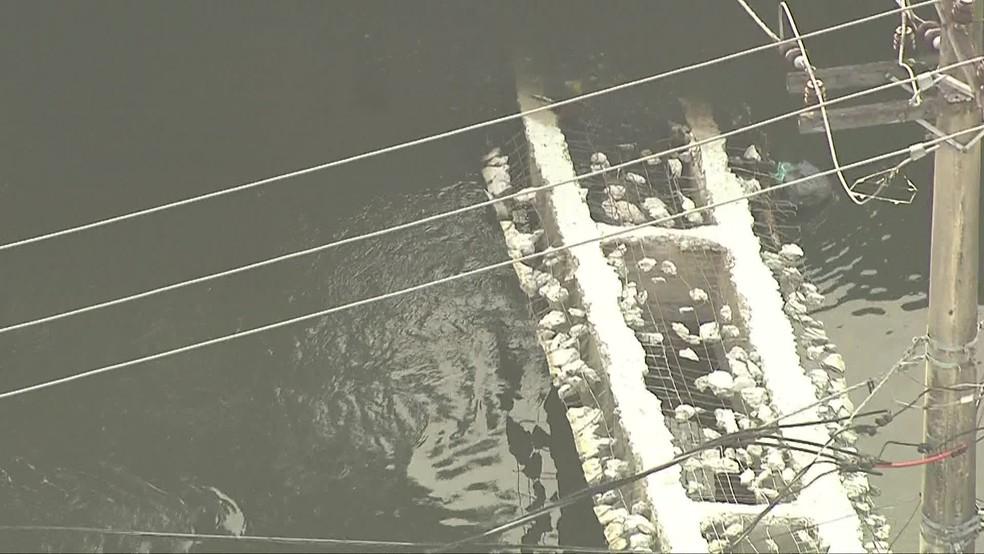 Ponte que dava acesso à comunidade foi destruída por ordem do tráfico, segundo denúncias — Foto: Reprodução/TV Globo