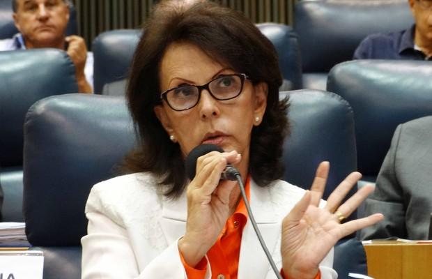 Dilma Pena (Foto: Luiz Alberto França/ Câmara Municipal de São Paulo)