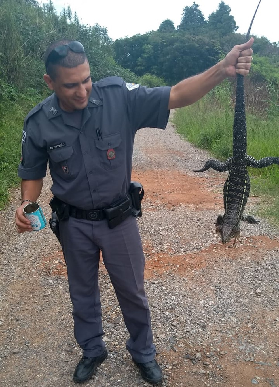 Policiais conseguiram retirar a lata e soltaram o lagarto em área de mata em Piedade — Foto: Polícia Militar/Divulgação