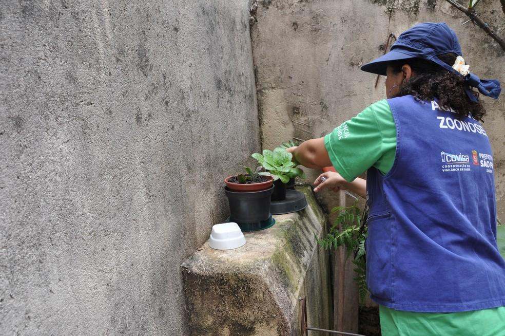 Paraíba tem 160 cidades em situação de alerta ou risco de surto de dengue, zika e chikungunya — Foto: Divulgação