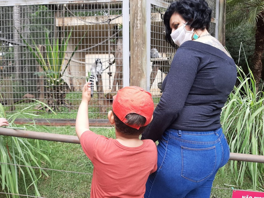 Após pedido nas redes sociais, zoológico oferece passeio exclusivo para menino autista: 'Gesto precioso'