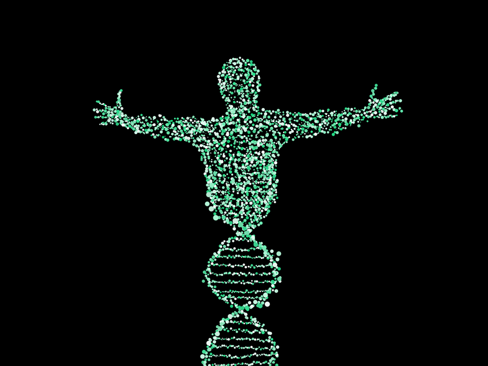 Edição de DNA de embriões humanos abre novas perspectivas para estudos (Foto: NeuPaddy/Pixabay/CC0 Creative Commons)