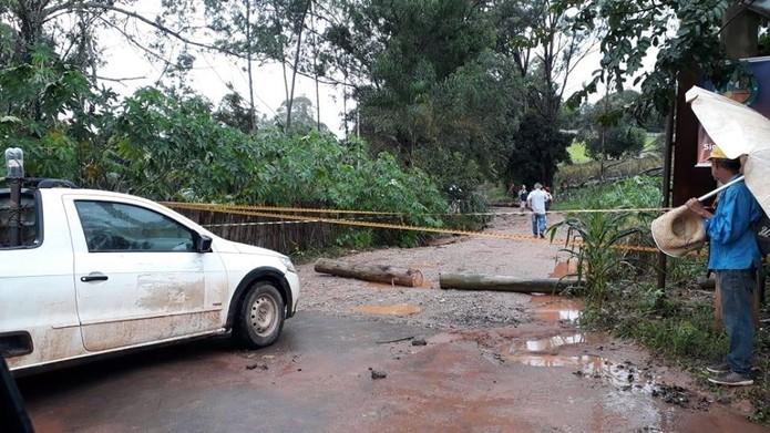 Árvores caíram em estrada rural em Monte Sião (MG) — Foto: Defesa Civil