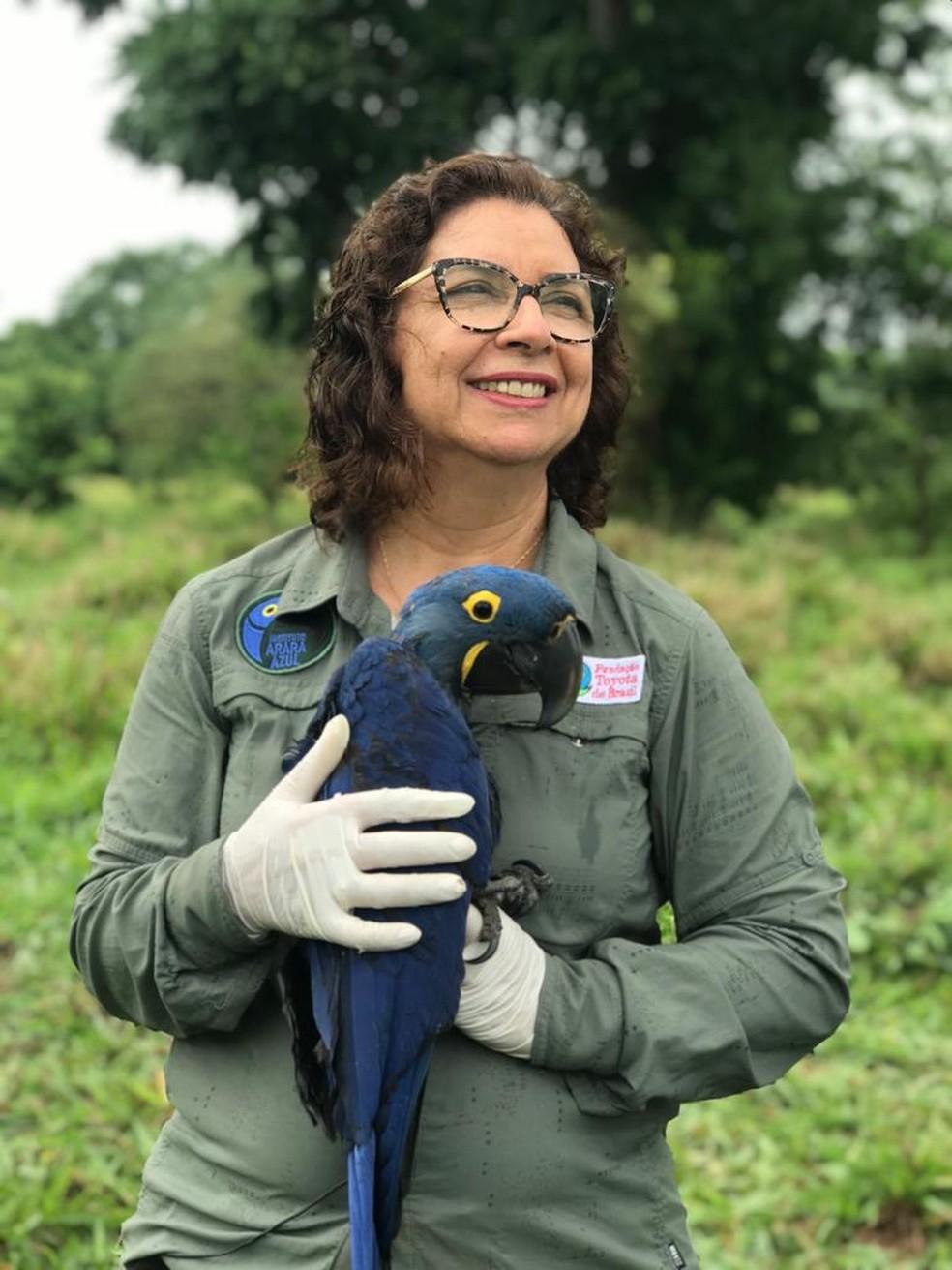 Bióloga sul-mato-grossense Neiva Guedes, que criou e executa há 30 anos um projeto que ajudou a tirar a arara azul da lista de animais em extinção,  Foto: Instituto Arara Azul/Divulgação