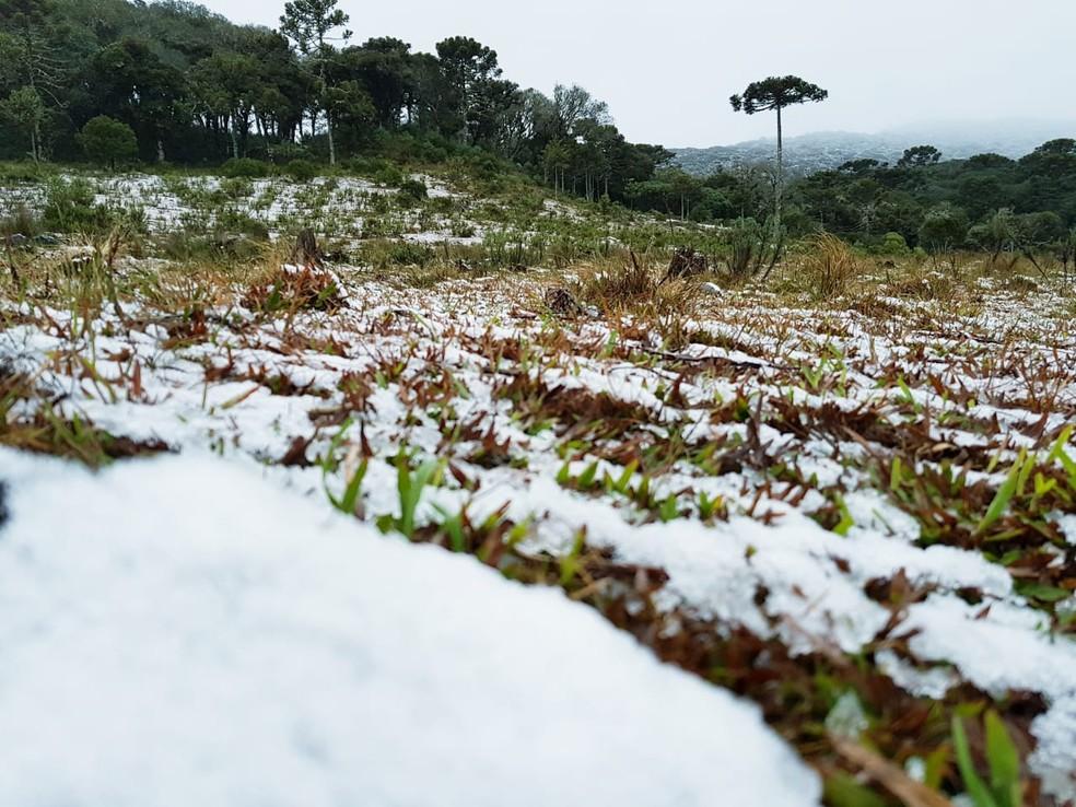 Fina camada de gelo na região do Mundo Novo, em Urubici (Foto: Mycchel Legnaghi/ São Joaquim Online)