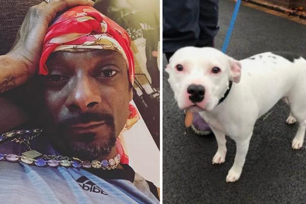 O rapper Snoop Dog e o cachorro Snoop (Foto: Instagram/Reprodução)