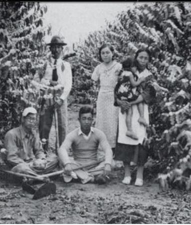 Família de imigrantes japoneses em trajes europeus num cafezal paulista na década de 20 (Foto: ACERVO DO MUSEU HISTÓRICO DA IMIGRAÇÃO JAPONESA NO BRASIL - SÃO PAULO)