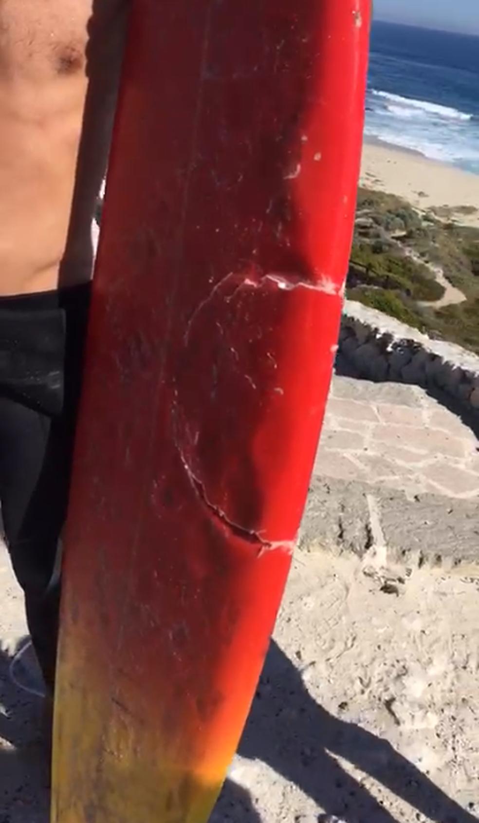 Prancha de surfista atacado fica com a marca da mordida do tubarão (Foto: Reprodução)